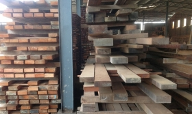 timber-latest-pic-min