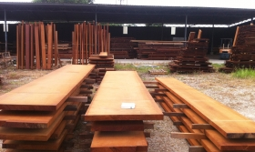 timber-pic1